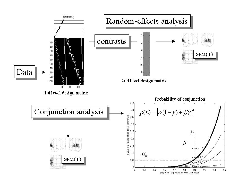an analysis of effects of depth and sediment concentration in the penetration of photosynthetically Shallow mean depths and low k d values for field irradiance in the water column (047–092 m-1) ensured the euphoric zone (depth of penetration of 1% surface irradiance) extended to the entire sediment surface of lakes s-3 and e-4 and to 89% of the sediment surface in island lake.
